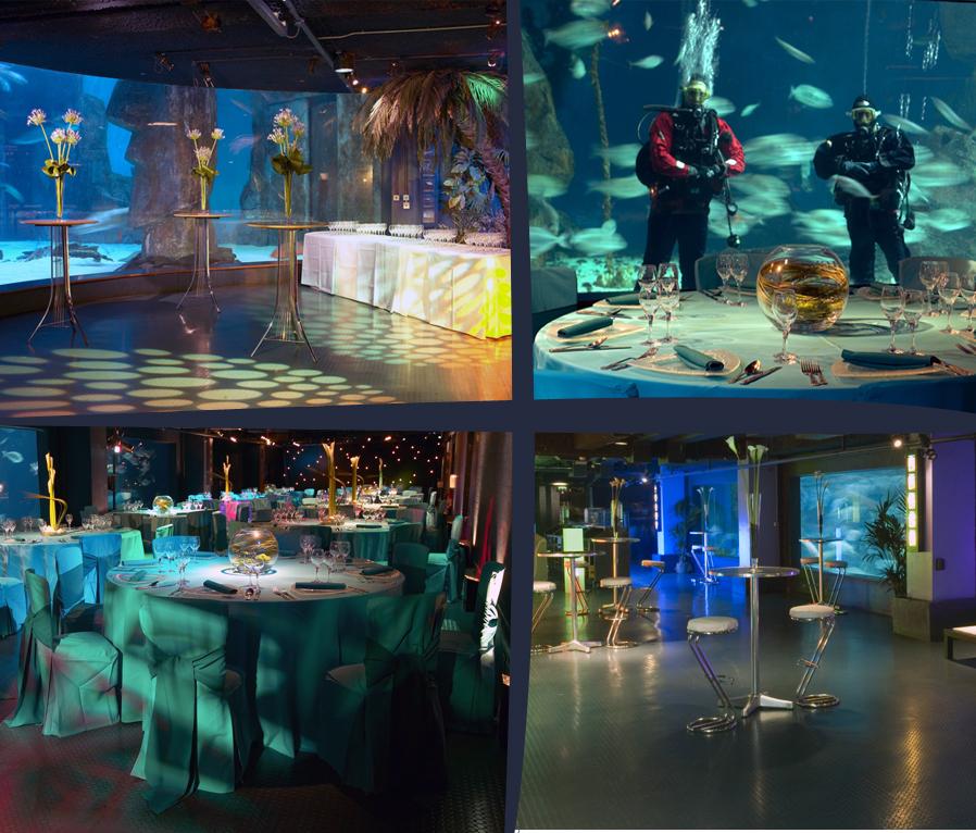 Shark Reef Encounter At The Sealife London Aquarium